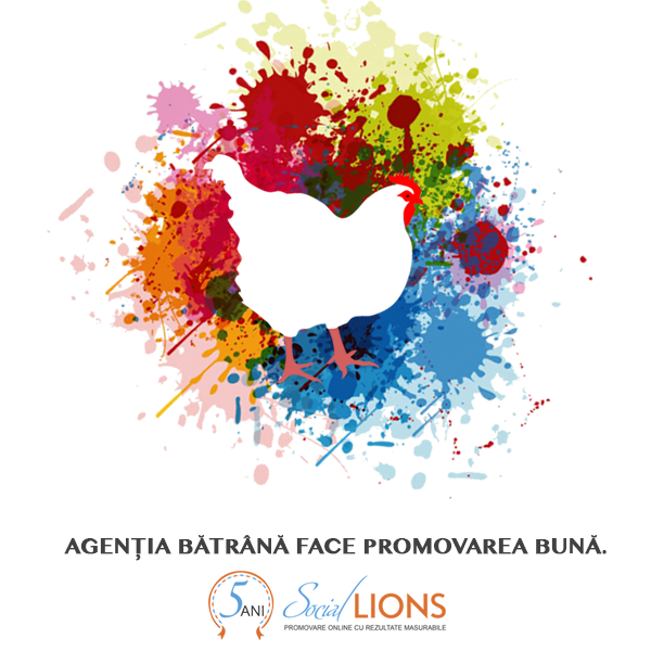 Agentie marketing online | Social Lions